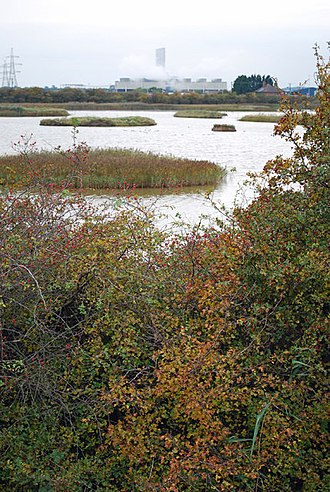 North Killingholme Haven - Former clay pits (2008)