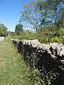 Northward along a stone wall on Maple Grove Road.jpg