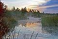 Nova Scotia DSC 0301 - Sunrise along Highway 101 (6837178247).jpg