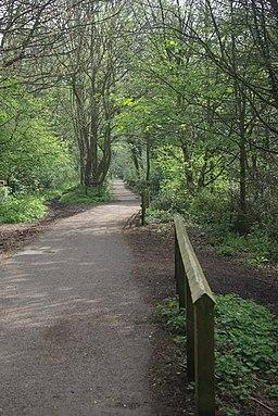 Nutbrook Trail, Marlpool - geograph.org.uk - 1266321