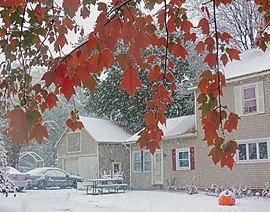 Snow falling into the backyard of a light brown house and garage. In the upper foreground are branches with leaves, mostly red but with some remaining green. A rubber inflatable jack o'lantern is in the lower right corner.