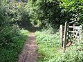 Old Railway line now Cycle path Redbourn - geograph.org.uk - 42167.jpg