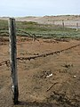 Old barbed wire fence - geograph.org.uk - 826489.jpg