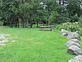 Olin Richardson Tract Public Access Area, Orrington, Maine image 1.jpg