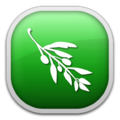 Olive Video Editor Logo.png