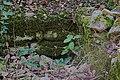 Oppidum de Mus - murs antiques (4).jpg