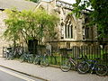 Oxford's Bicycles.JPG
