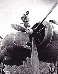 Man atop a twin-engined military aircraft, looking down at the camera