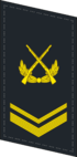 PLANF-Collar-0705-SSG.png