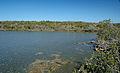 Pain Pond (San Salvador Island, Bahamas) 1 (16468018605).jpg