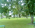 Park Konstytucji 3 Maja - panoramio - geo573.jpg
