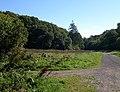 Park Woods - geograph.org.uk - 2084827.jpg