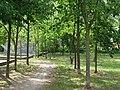 Park at Wasserstadt Spandau 2019-06-11 02.jpg