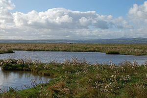 Parkgate, Cheshire - View of the marsh, Parkgate