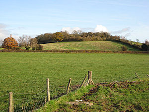 Sutton Walls Hill Fort - Image: Pasture east of the Moreton road geograph.org.uk 1051138