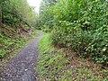 Path, Rhodfa'r Ystad - geograph.org.uk - 2082789.jpg