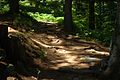 Pelister Trail.JPG