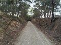 Penwortham SA 5453, Australia - panoramio (5).jpg