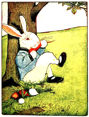 Peter-rabbit-albert-23.png