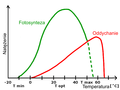 Photosynthesis and respiration - temperature and light graph (pl).png