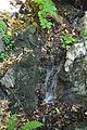 Piccolo corso d'acqua.JPG
