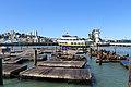 Pier 39 - panoramio (25).jpg