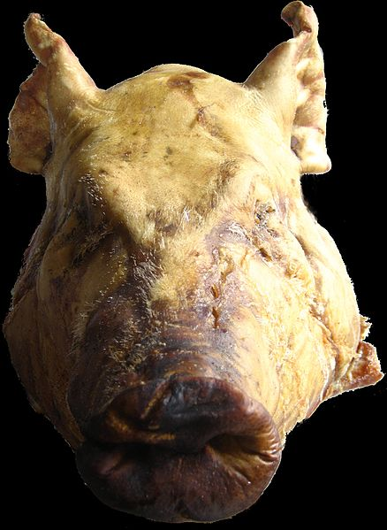 File:Pig head on Black.jpg