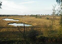 Pikmeeuwenwater.jpg