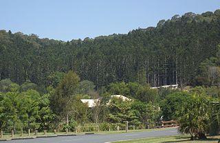 Currumbin Ecovillage