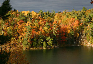 Gatineau Park - Pink Lake at the end of October