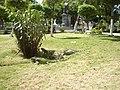 Plaza Bolivar de Puerto La Cruz - panoramio.jpg
