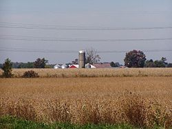 Corn and soybeans dominate Pleasant Township