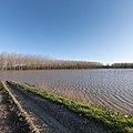Po River Flood - Viadana, Mantua, Italy - December 23, 2019.jpg