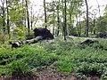 Poensgenpark-27-09-2014 042.jpg