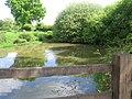 Pond at Frochas Farm - geograph.org.uk - 808756.jpg