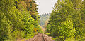 Portland and Western Railroad Prescott Rainier Oregon Train Tracks (19959291520).jpg