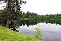 Prameny Mýtský rybník.jpg
