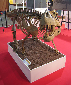 Prestosuchus chiniquensis, Skelettrekonstruktion