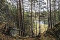 Prigorodnyy r-n, Sverdlovskaya oblast', Russia - panoramio (140).jpg
