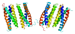 Protein CNTF PDB 1cnt.png