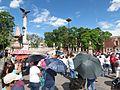 Protesta en favor de los profesores de Oaxaca, en la plaza principal de Aguascalientes (junio, 2016) 13.jpg