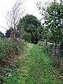 Public footpath - geograph.org.uk - 954865.jpg