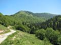 Pyjet e Vranicës.JPG