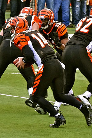 Cincinnati Bengals - Andy Dalton takes a snap before a game against the Baltimore Ravens on January 1, 2012.