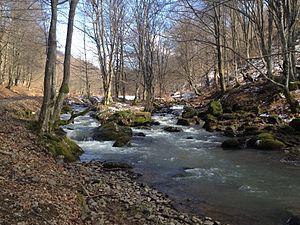 Negrești-Oaș - Image: Râul Tur, primăvara 2013