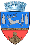 Coat of arms of Bacău