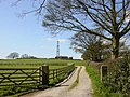 Radio Mast on Birch Hill near Kelsall - geograph.org.uk - 153339.jpg