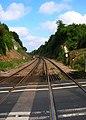Railway Cutting, Chartham Hatch Crossing - geograph.org.uk - 535029.jpg