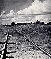 Railway lineTreblinka.jpg
