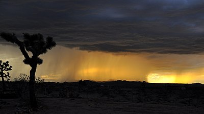 Rain Falling over Desert at Sunset.jpg